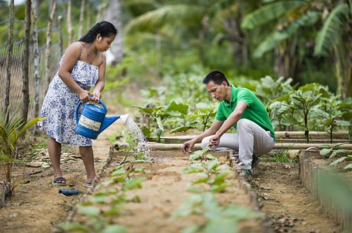 With food projects in more than 20 countries, Samaritan's Purse Canada is working through your prayers and gifts to confront a growing global hunger crisis. One of the most effective ways to relieve suffering from hunger is by training families to grow plentiful, resilient gardens, like this one in the Philippines.