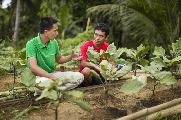 Staff teach beneficiaries how to grow income-producing home and community gardens.