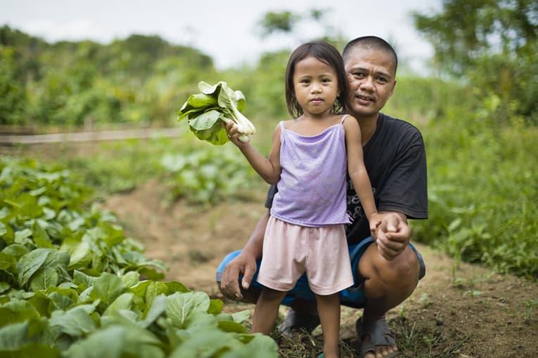 Families work together to grow the vegetables in their gardens.