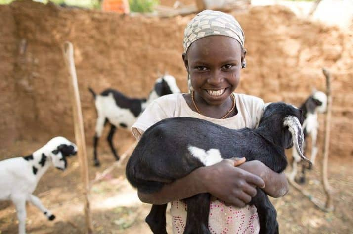 Goats provide nutritious milk, cheese, and income for families in need.