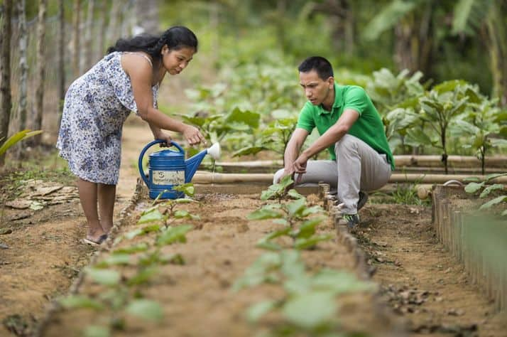 Livelihoods training lifts Filipino families out of poverty