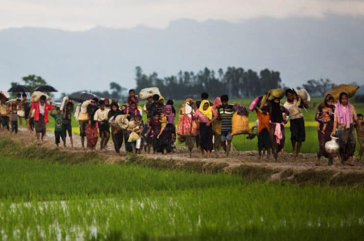 Rohingya fleeing violence in Myanmar crossing into Bangladesh.