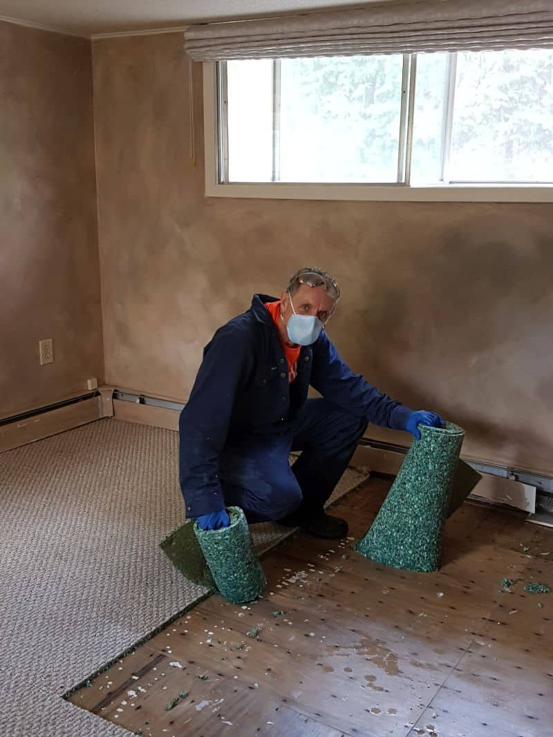 This volunteer working in Constance Bay this afternoon is removing water damaged carpet and underlay so the area can be sanitized.