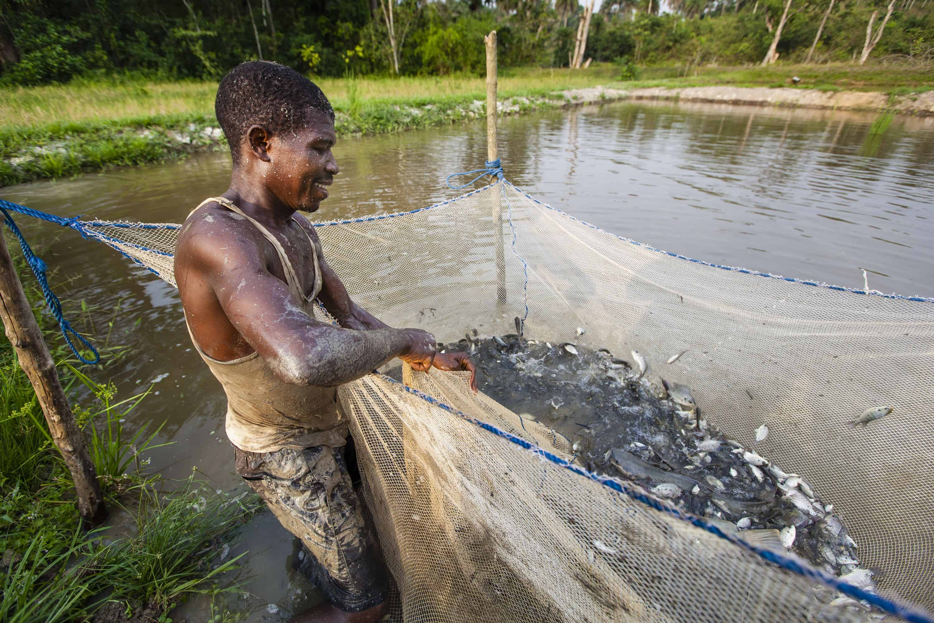 Samaritan's Purse built the fish pond in Liberia to help families in need.