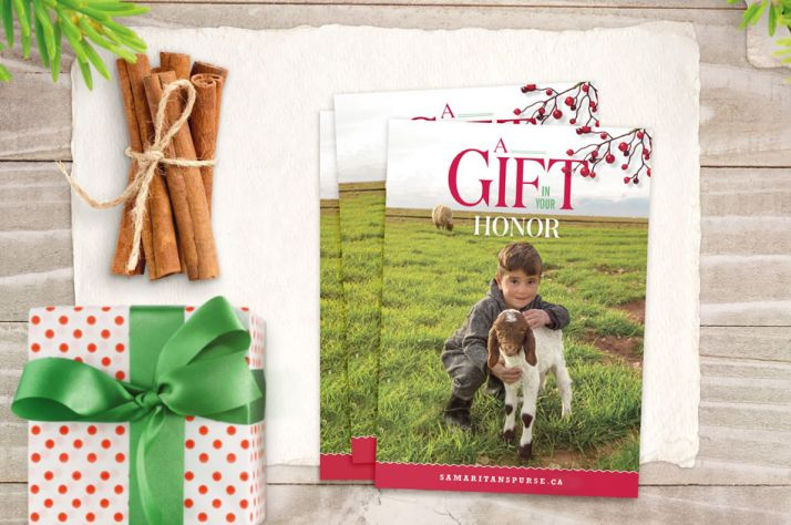 Millions of women are exploited, abused, neglected, and marginalized every day. Restore hope and dignity when you give a gift from the Samaritan's Purse Gift Catalog.