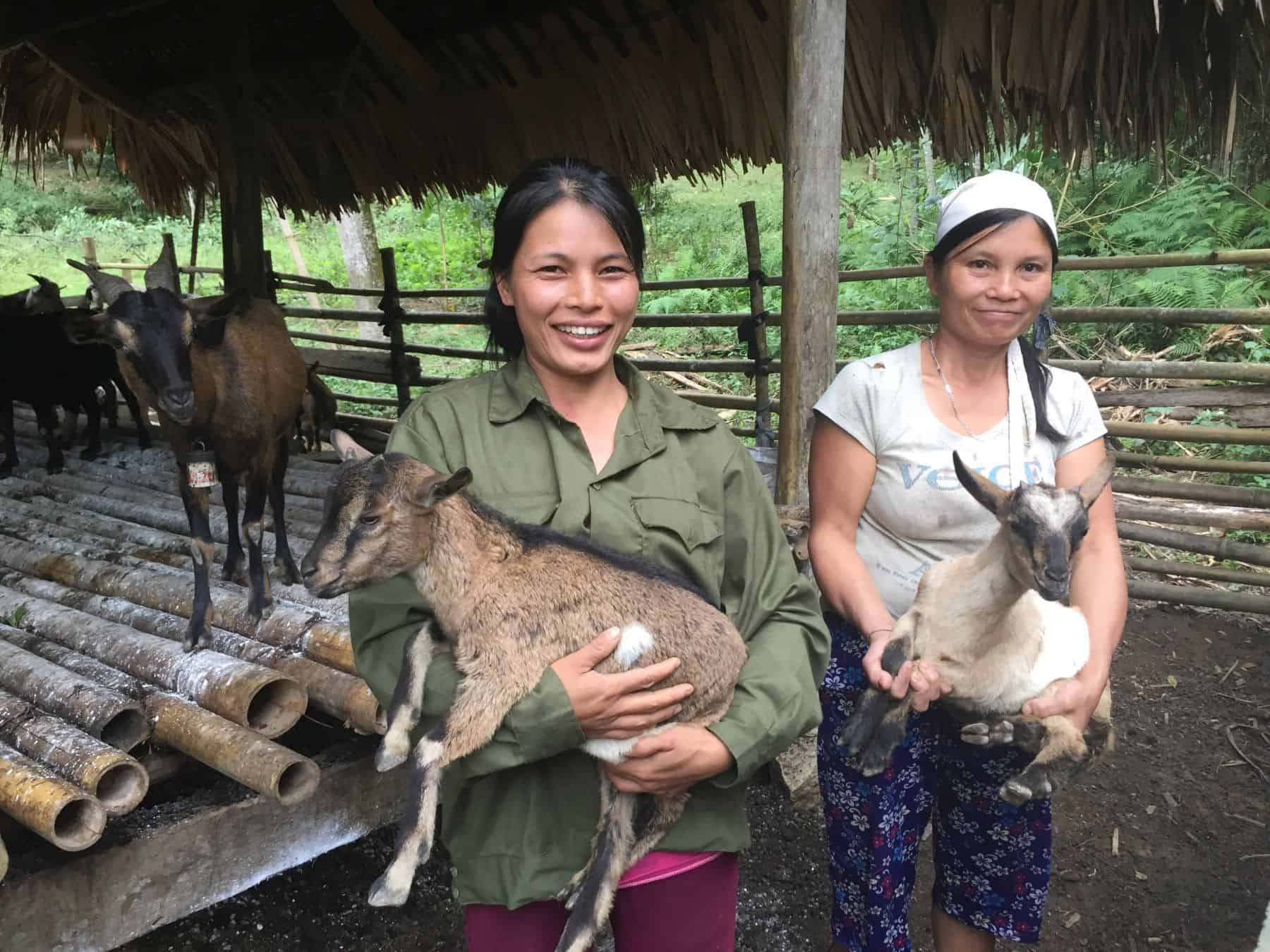 Goats provide families with a sustainable way to provide food.